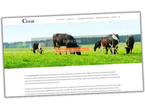 Strona Partner CEZAK