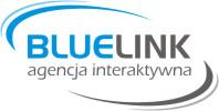 Strony internetowe Konin | Bluelink