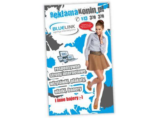 Rollup ReklamaKonin.pl