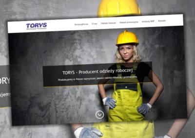 Strona internetowa Torys.pl